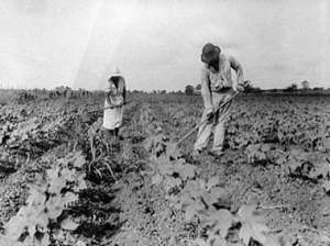 Sharecropping During the Depression