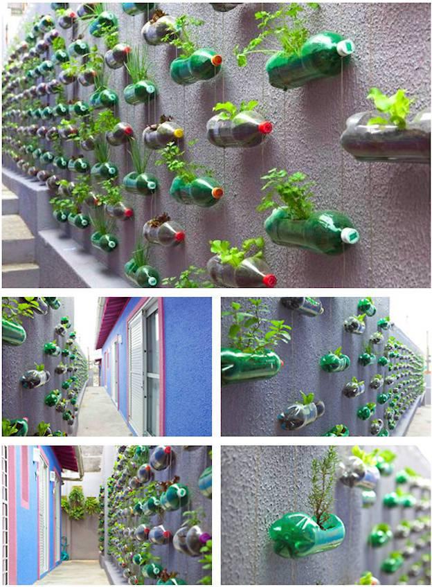 vertical-garden-11