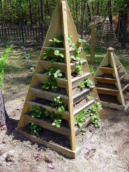 vertical-garden-15