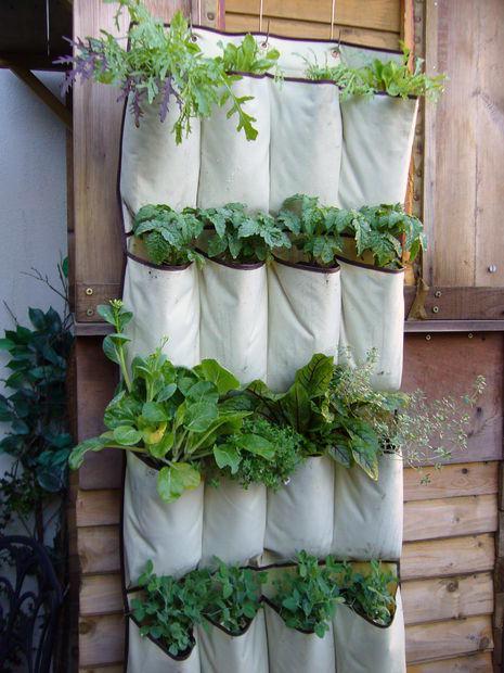 vertical-garden-21