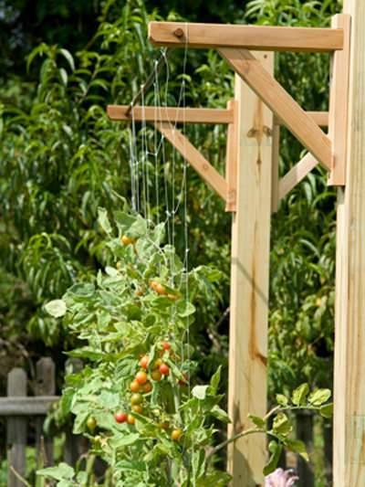 vertical-garden-6