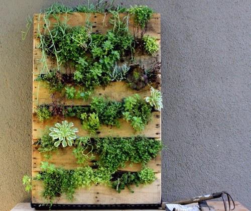 vertical-garden-9