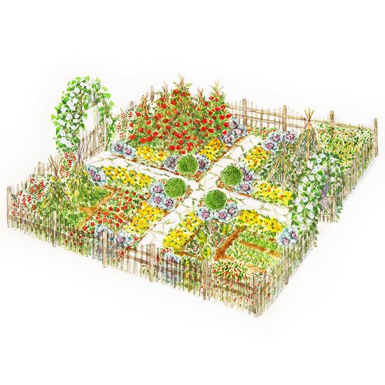 5 small vegetable garden plans how to provide for Small veg garden plan